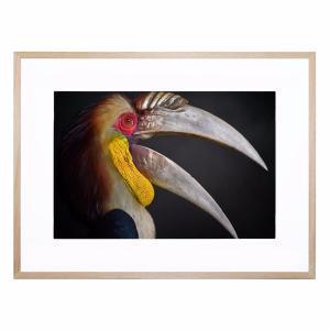 Jabrix 2 - Framed Print