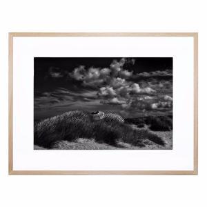 Seaside Rendezvous - Framed Print