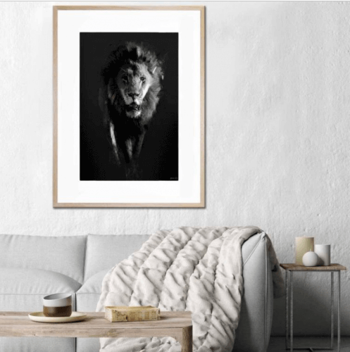 UNITED INTERIORS - LION DARK - FRAMED PRINT animal print photographic art lili green