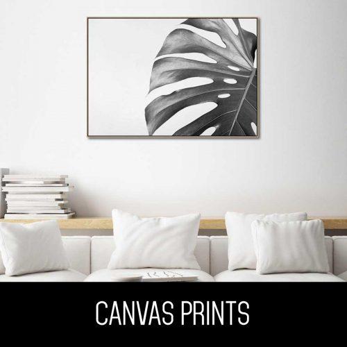 monochrome black and white botanical canvas prints